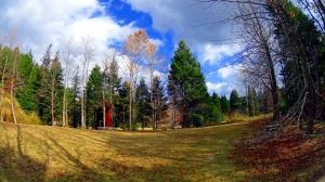 森林植物園8